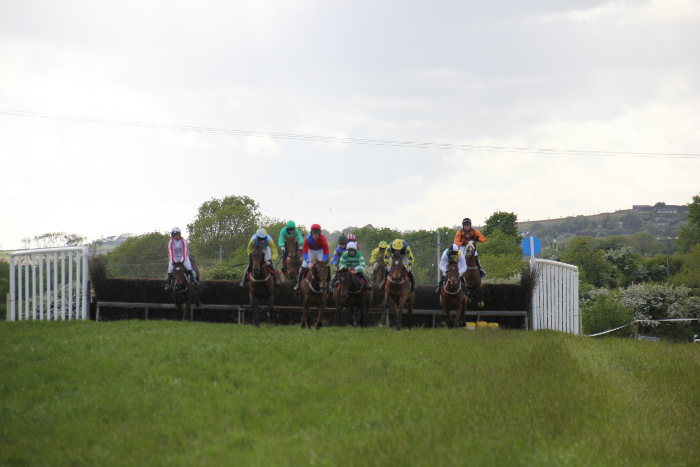 Photograph of horses jumping a point to point fence at Kinsale races
