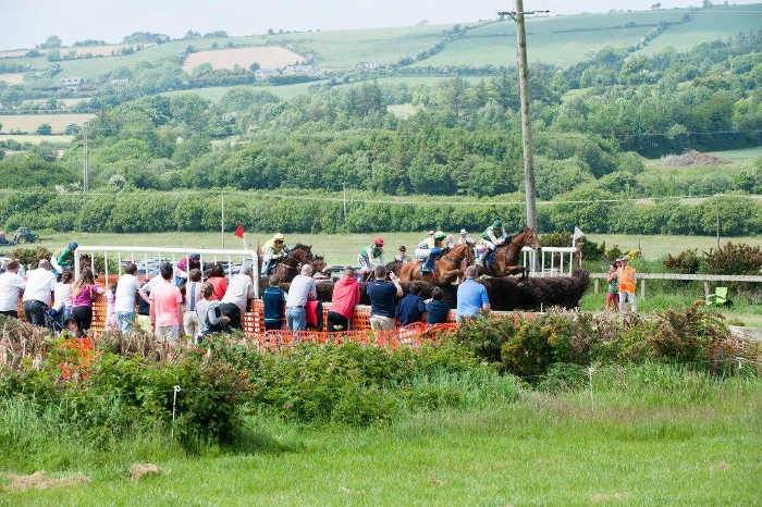 Photograph of horses jumping fence with stewards and spectators beside race track at Kinsale point to point