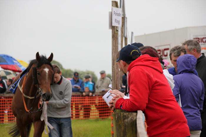 Photograph of boy walking horse in parade ring at Kinsale Point to Point