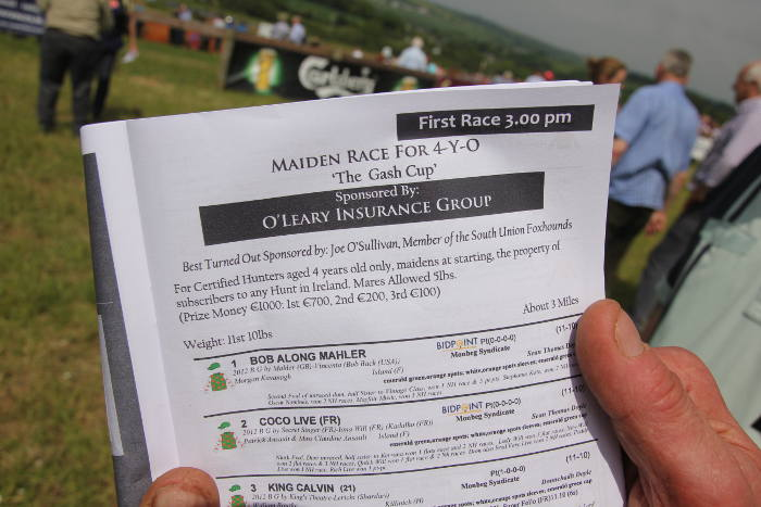 Photograph of racecard entry for Kinsale Point to Point